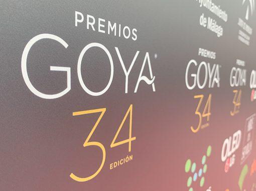 GOYAS 2020